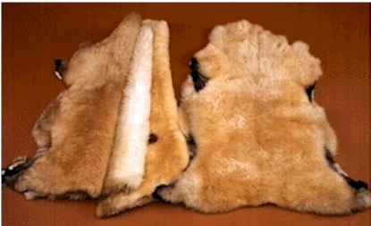 Texas Natural Sheepskins
