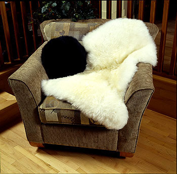 Single White Shaggy Sheepskin Rug