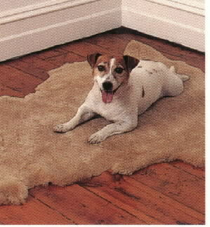 Sheepskin Pet Pad