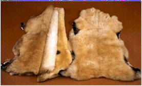 Village Shop - Texas Natural Sheepskins